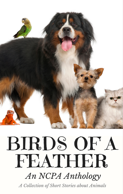 Birds of a Feather, front cover.png