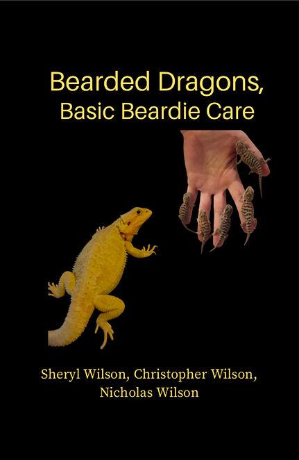 Kindle Cover, 6-29-20 copy.jpg