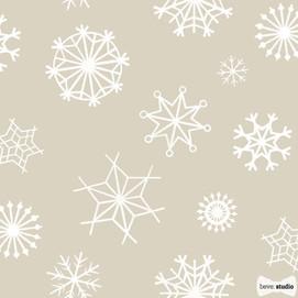 Snowflakes beve studio