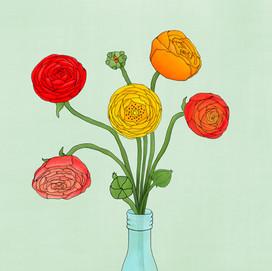 beve studio ranaculus in vase