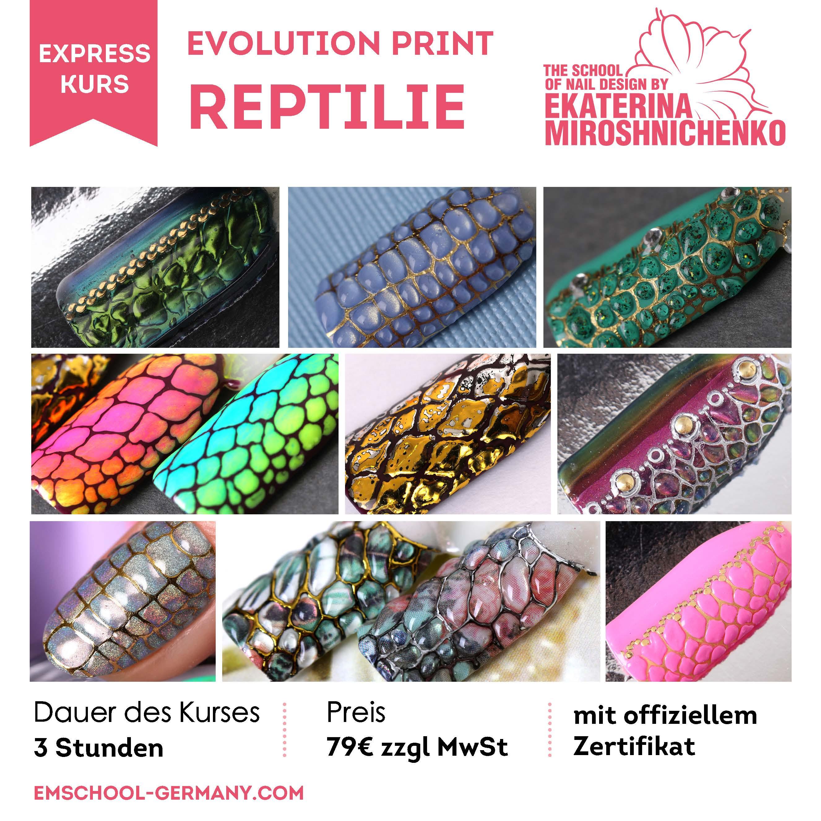 Evolution Print Reptilie