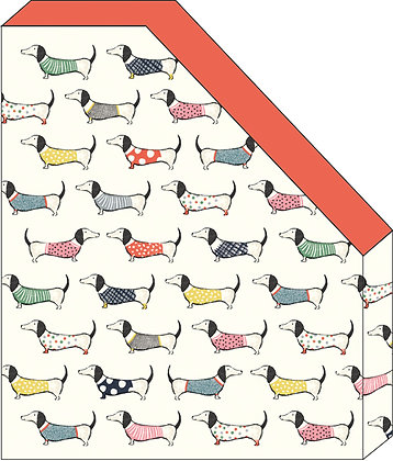 A4 מעמד חוברות כלבים