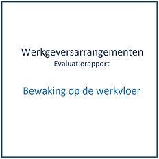 Werkgeversarrangement - Bewaking op de w