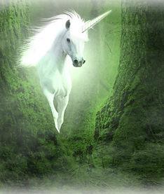 Unicorn-pic - PC.jpg