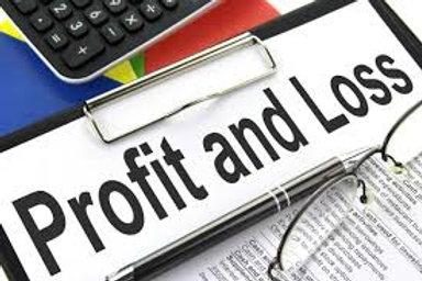Profit & Loss Statement/Template