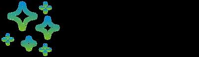 Flying Pixels Logo Black 2.png