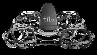 FyLo 1.png
