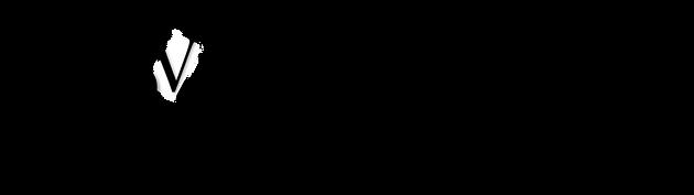 3DVR Logo 2.png