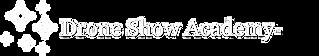 DSA Logo White.png