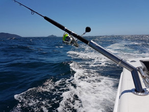 Turn your trailerboat into a bluewater machine with Hook'em Rod Riggers