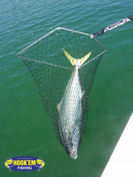 KL-ACTION-SHOT-120cm-King-Fish-Capture-a