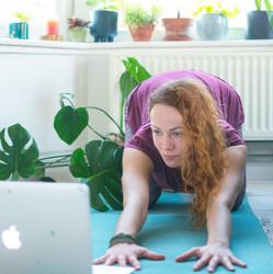 Suzanne home yoga.jpeg