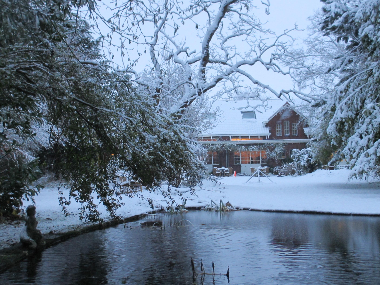 Zeeland sneeuw tuin