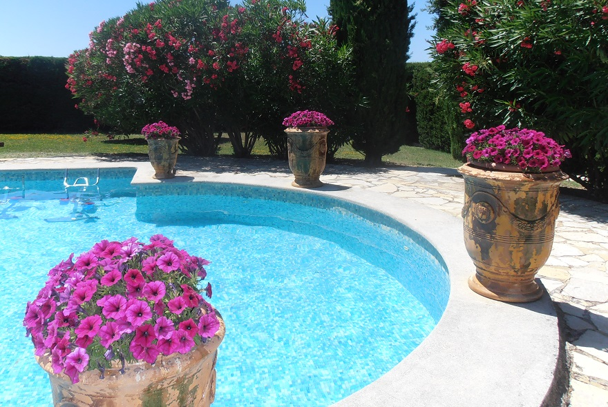 Provence (2)
