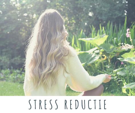 Leren omgaan met stress