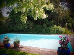 Zeeland retreat accommodatie zwembad in