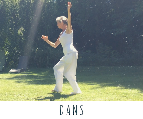Dans door je leven
