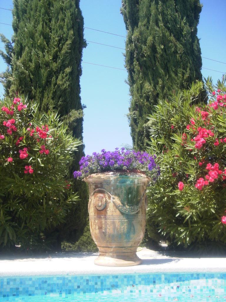 Provence (10)