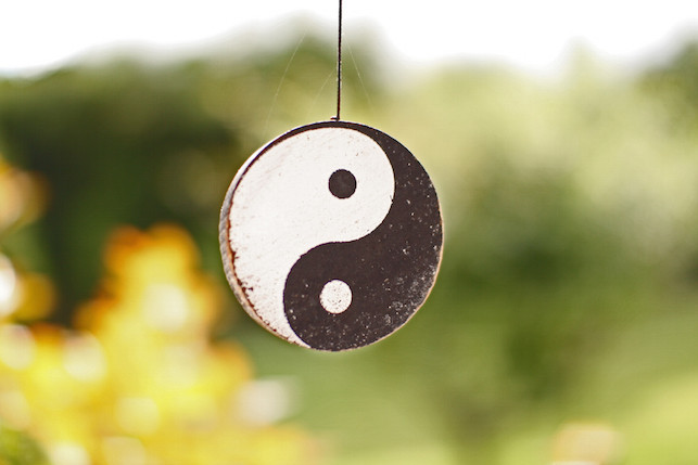 FIT sfeer yin yang.jpg