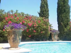 Provence (1)