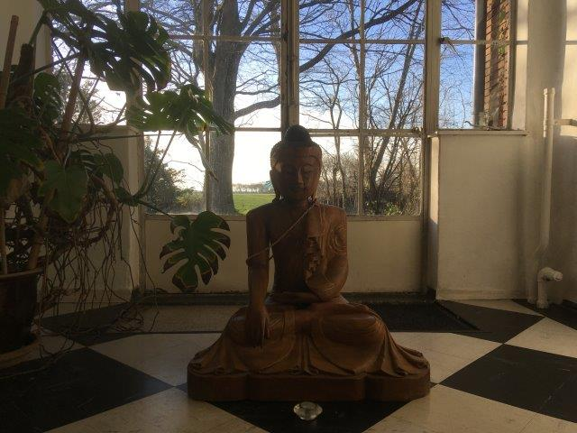 Zeeland buddha