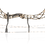 Thumbnail: Carbon Featherweight Compound Bow