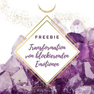 Freebie Transformation PIC.png