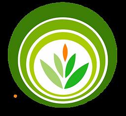 Логотип ЦРО чистый( без надписи).png