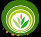 Логотип ЦРО чистый.png