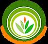 Логотип ЦРО чистый500.png