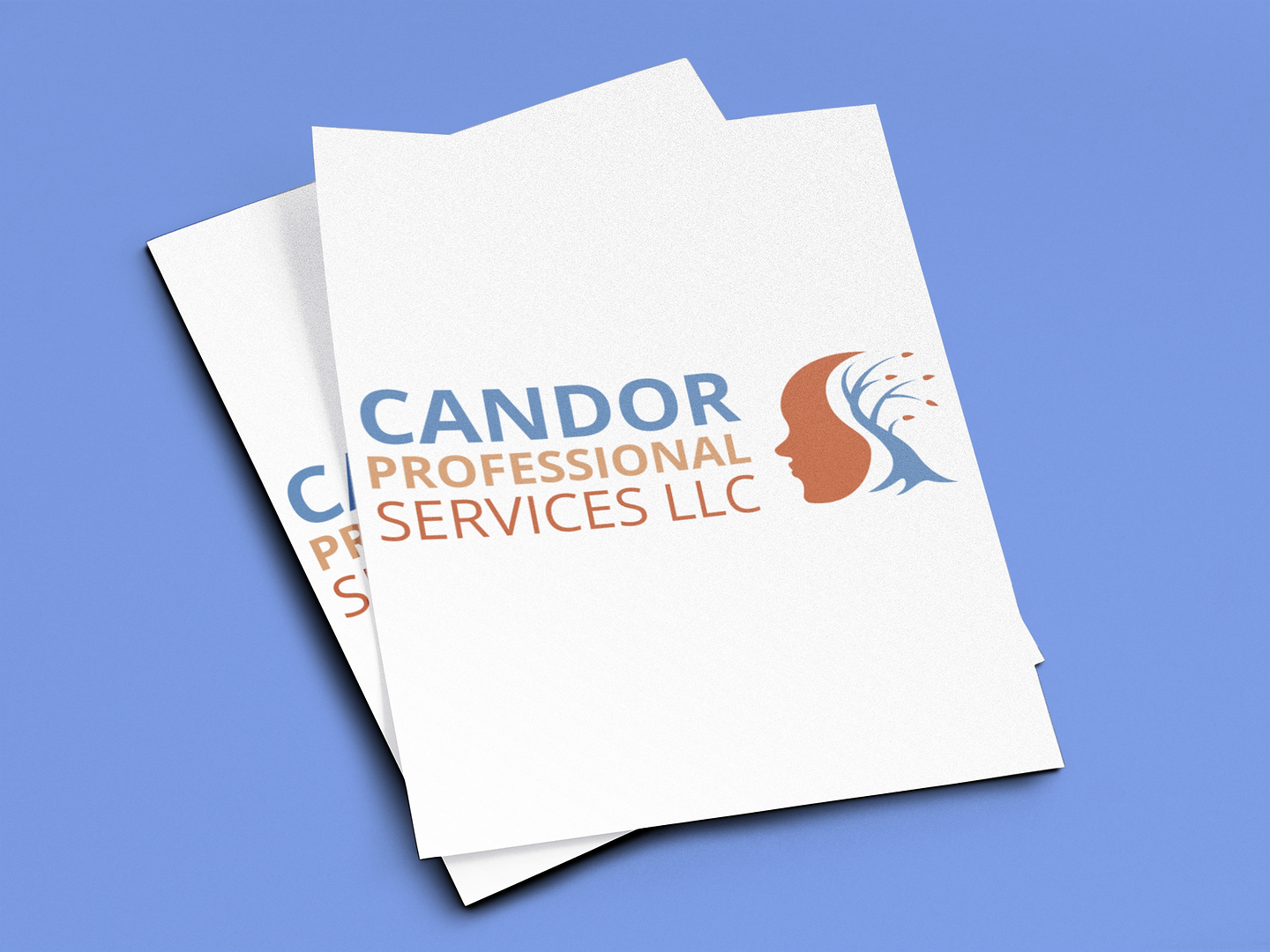 Candor Professional Services LLC