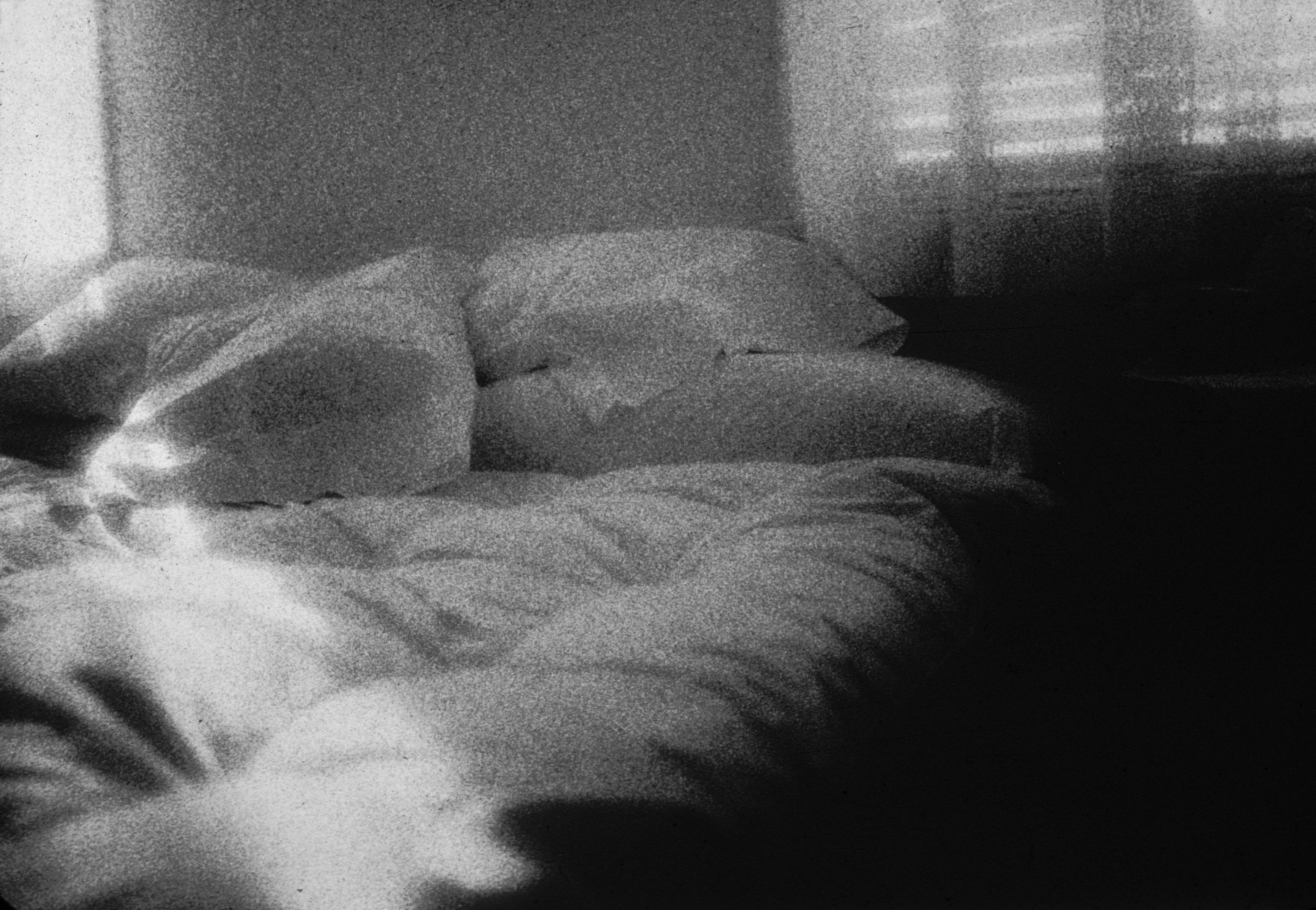 014bed
