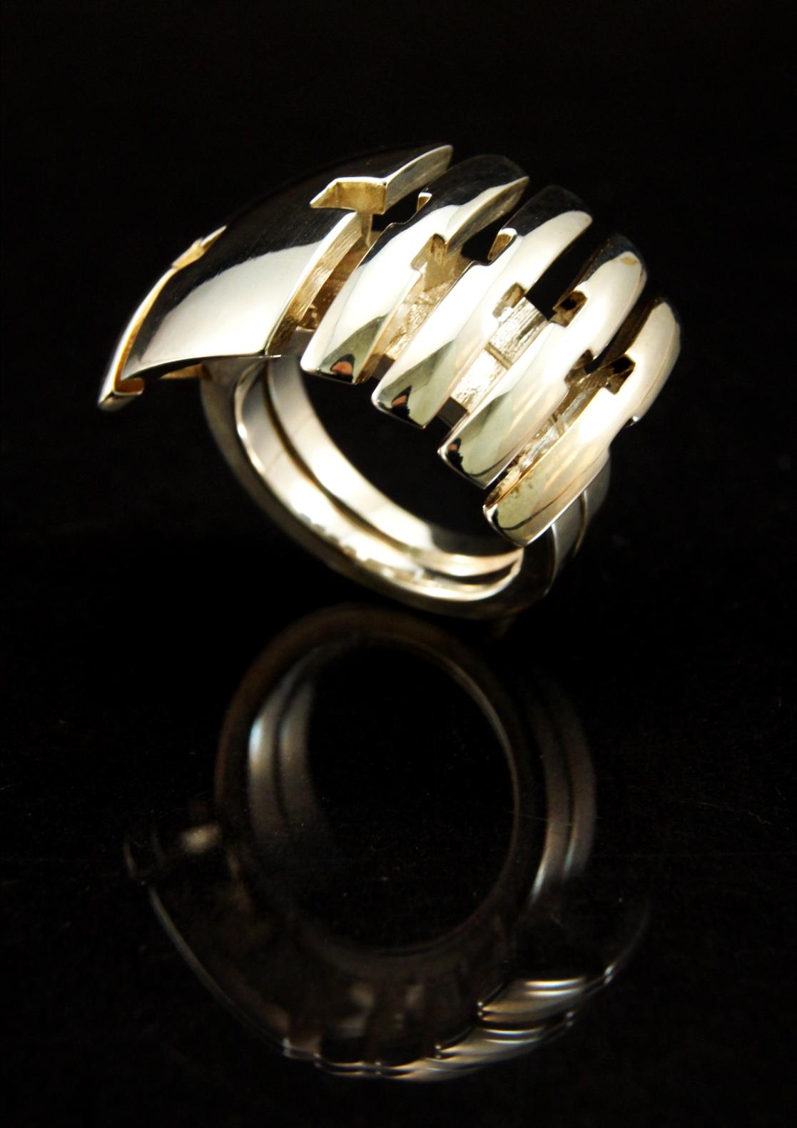 Preservation ring