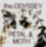 P&M Podcast Logo.jpg