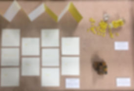 yellowbook.jpg
