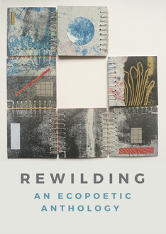 Rewilding (2020)