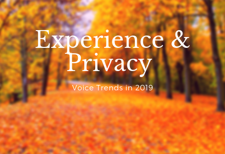 Customer Experience and Privacy. Reflecting Voice UI trends for 2019.