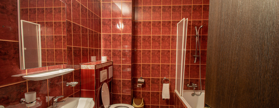 Garsonieră - 5 - baie