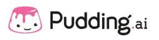 Pudding.ai.jpg