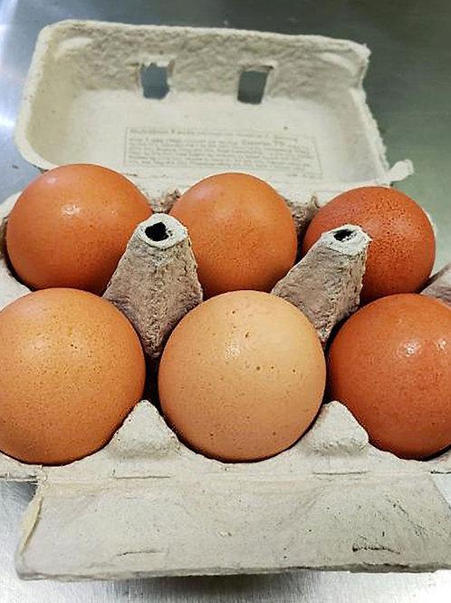 Eggs Organic 6 Counts