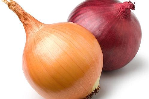 Onions (Organic)