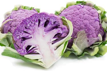 Cauliflower Purple