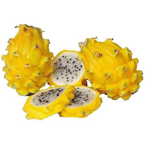Dragon Fruit Yellow