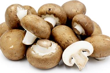Mushrooms Pack (Organic)
