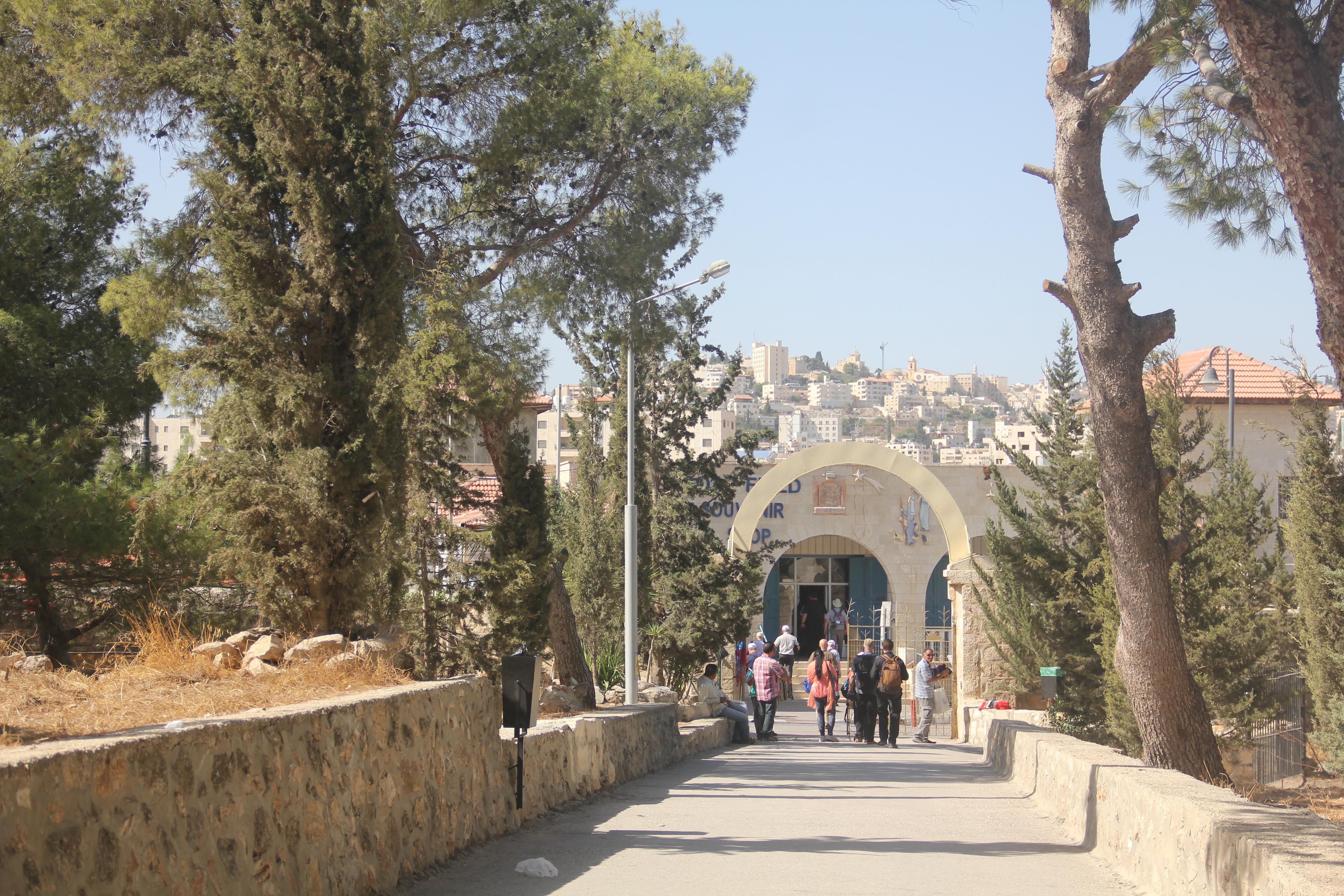 【伯利恆曠野】這是天使向牧羊人報彌賽亞降生喜訊的地方001