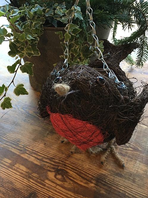 Winter robin hanging basket