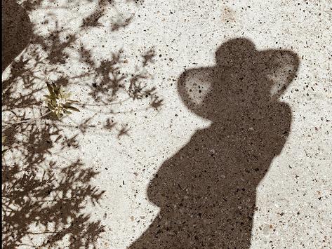 Dear Shadow