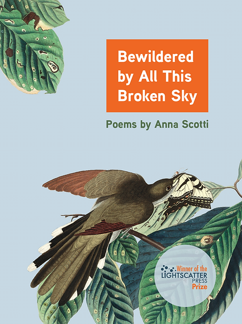 Bewildered by All This Broken Sky: Poems by Anna Scotti (PREORDER)