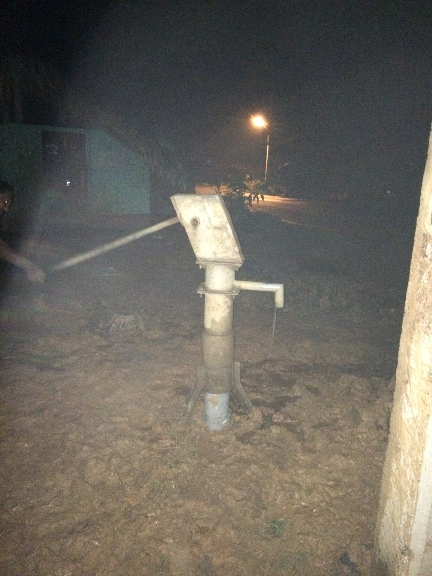 A New Functional Pump