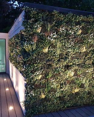 Garden Room Green Wall.JPG
